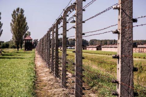 Auschwitz day trip from Krakow