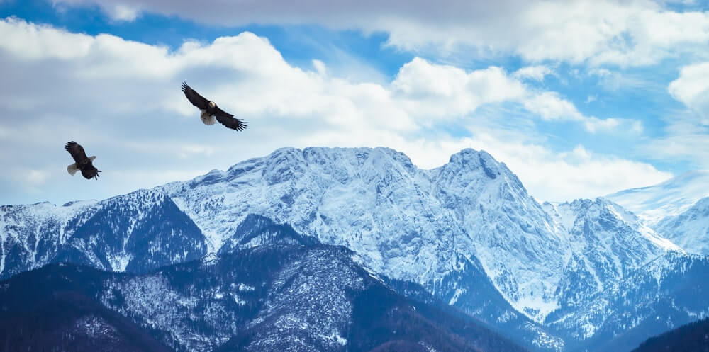 Winter mountains panorama of Zakopane, High Tatra Mountains